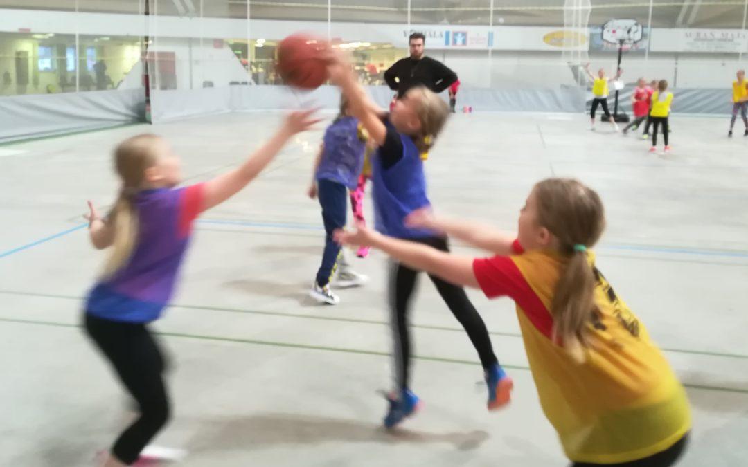 Ilmainen Unified -koripallokurssi keväällä Oulussa!
